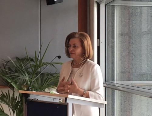 Maria Grapini, gazda şi moderatorul unei dezbateri în PE. Accesibilitatea web pentru IMM-uri, în atenţia europarlamentarilor.