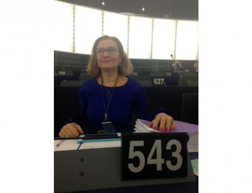 Susținerea industriei europene, într-o intervenție oficială a Mariei Grapini!