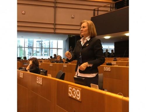 """Maria Grapini, pe tema MCV, în adresare directă către Comisia Europeană: """"În termeni democratici, se cheamă discriminare!"""""""