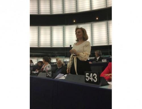Presat de Maria Grapini să definească statul de drept, Comisarul Oettinger s-a pierdut în detalii!