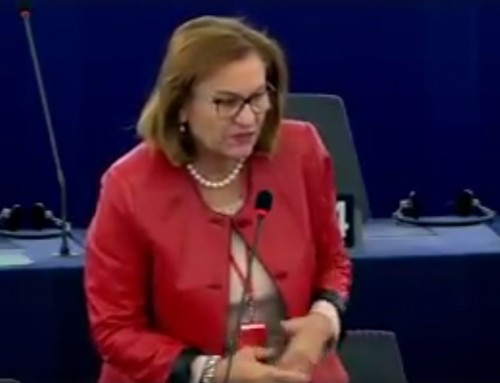 Maria Grapini pune omul în centrul noii Agende Europene pentru Competenţe!