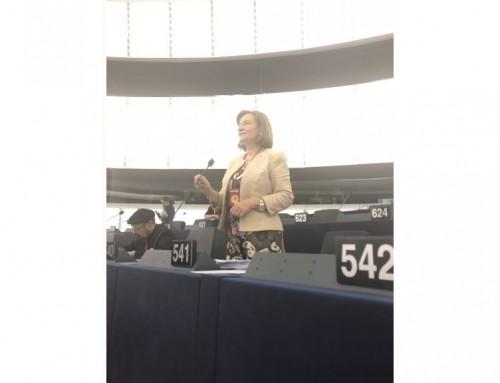 """Apărare europeană la Strasbourg, pe protecția datelor personale. Maria Grapini: """"Nu putem lăsa cetățenii și companiile să se lupte cu mastodonții!"""""""