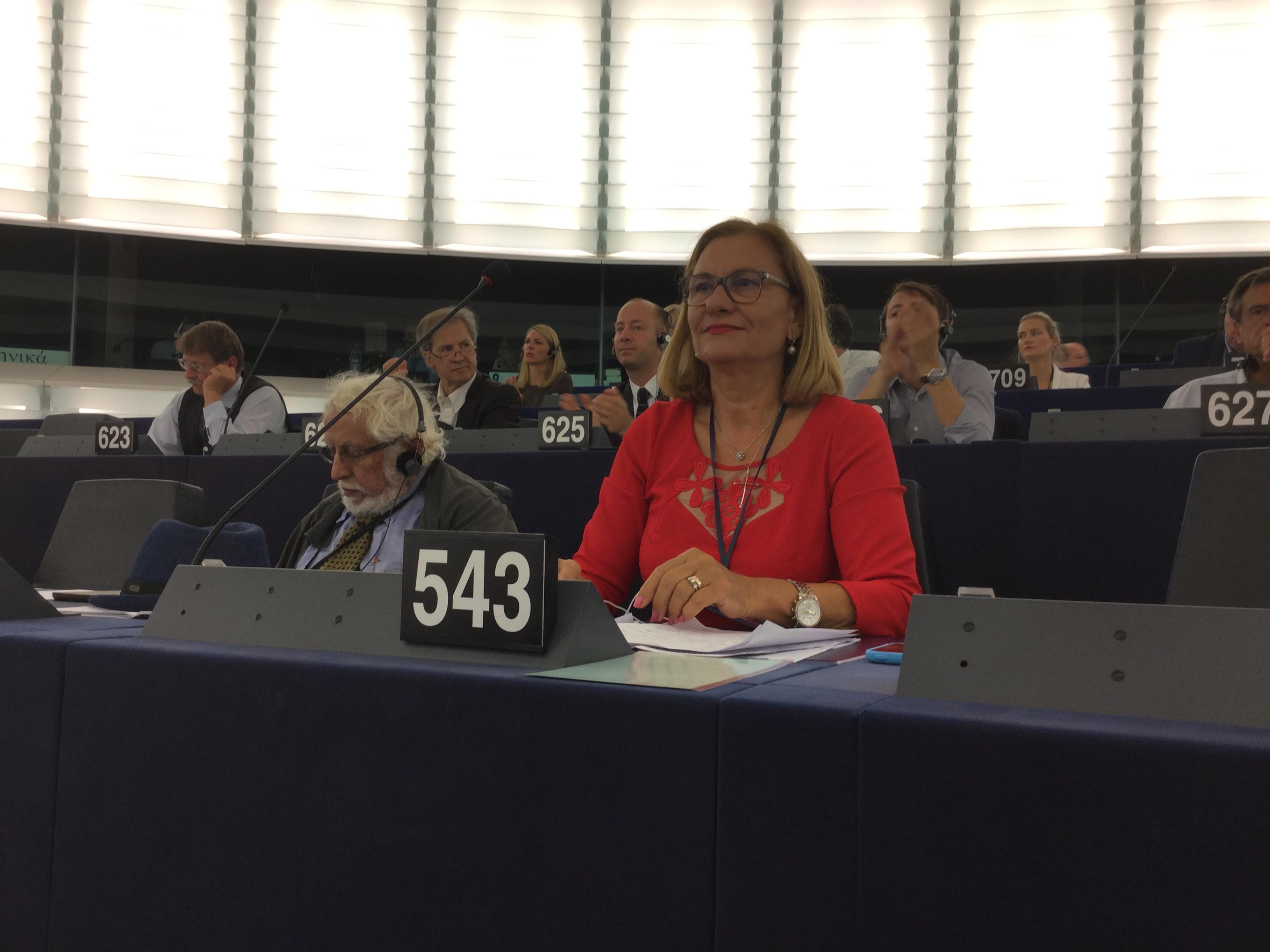 Soarta complexă a Europei, într-o intervenţie a europarlamentarului Maria Grapini