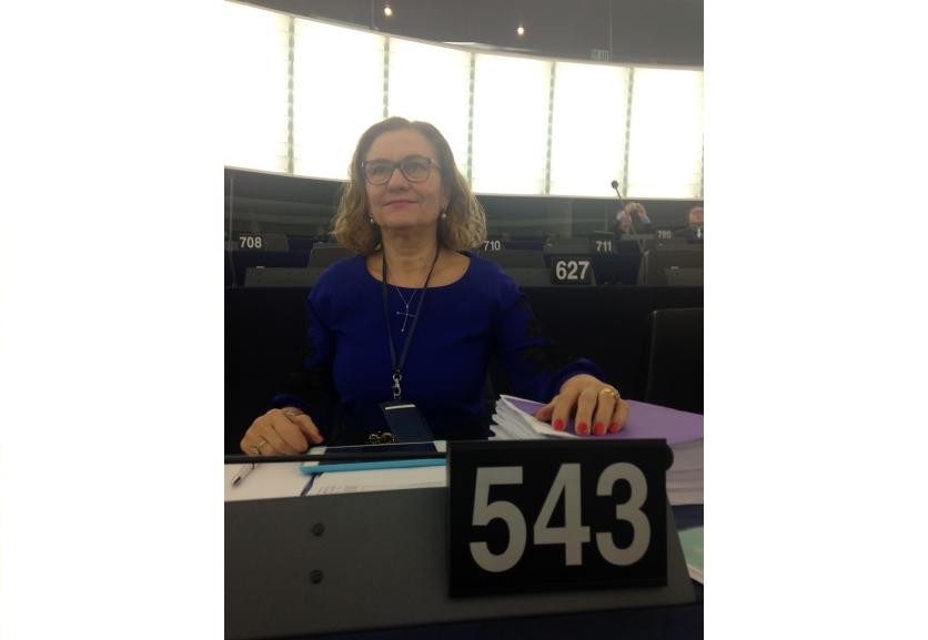 Maria Grapini cere standarde comune și în domeniul căilor ferate!