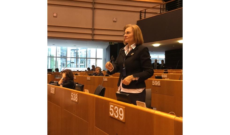 """Maria Grapini ține în corzi Consiliul European: """"Cum să avem în viitor o Europă Unită, dacă CE împarte Europa în două spații?"""""""