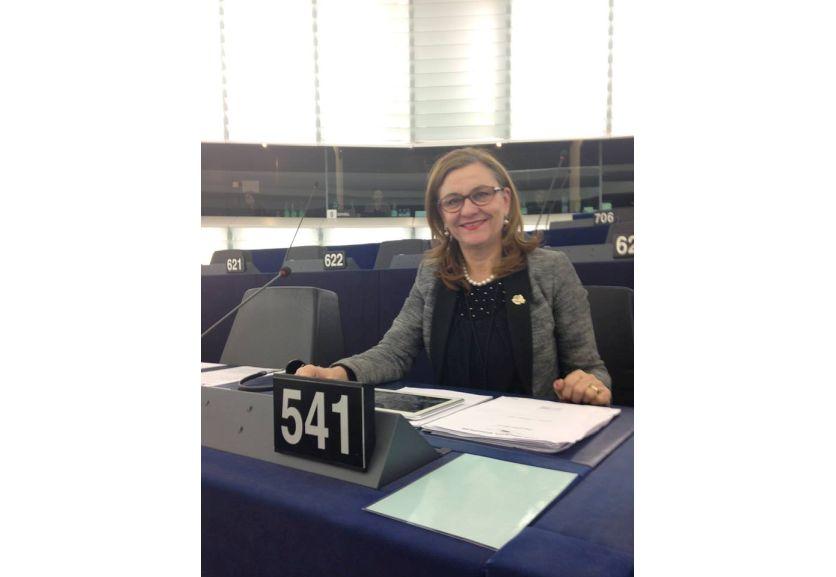 Maria Grapini îi ajută pe timișoreni să acceseze fonduri europene importante!
