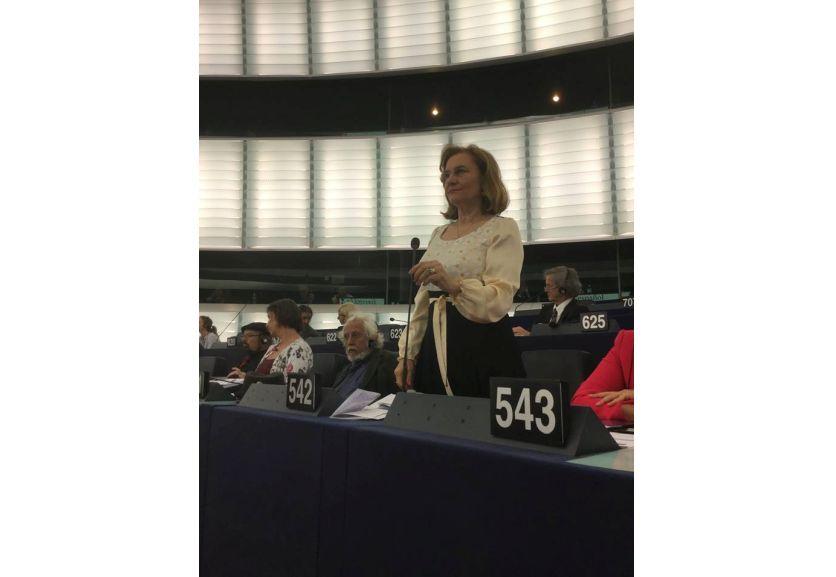 """Maria Grapini, în plenul PE: """"Da, trebuie să îmbunătățim cultura antreprenorială, problema este ce facem cu cea a administrațiilor publice care nu plătesc?"""""""