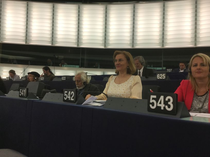 """Delegațiile română și germană ale S&D și-au dat mâna în Politica de Coeziune. Maria Grapini: """"Dacă se vrea, se poate!"""""""