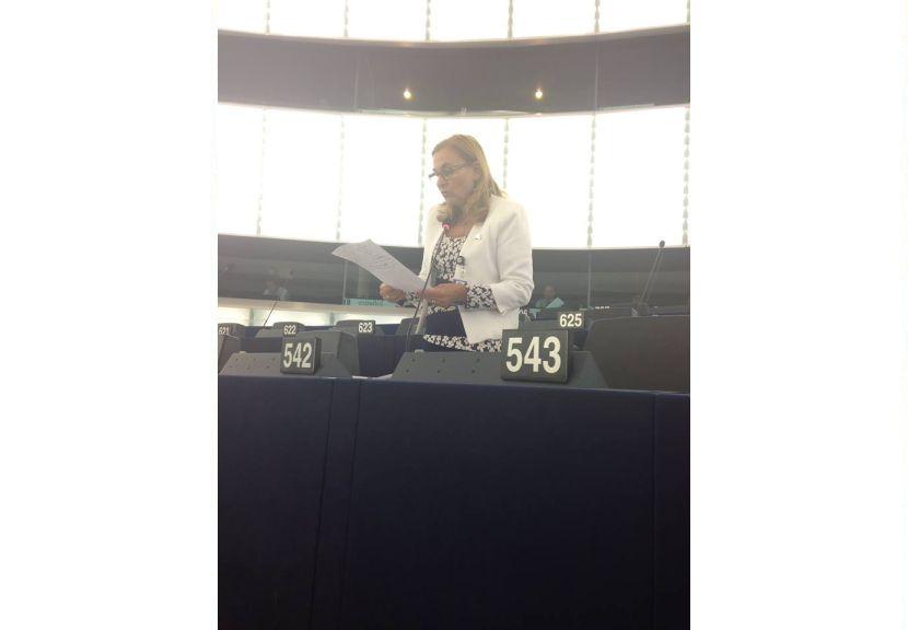 """Maria Grapini continuă demersurile europene pro IMM-uri: """"Există un fond important pe care România trebuie să-l considere prioritar!"""""""