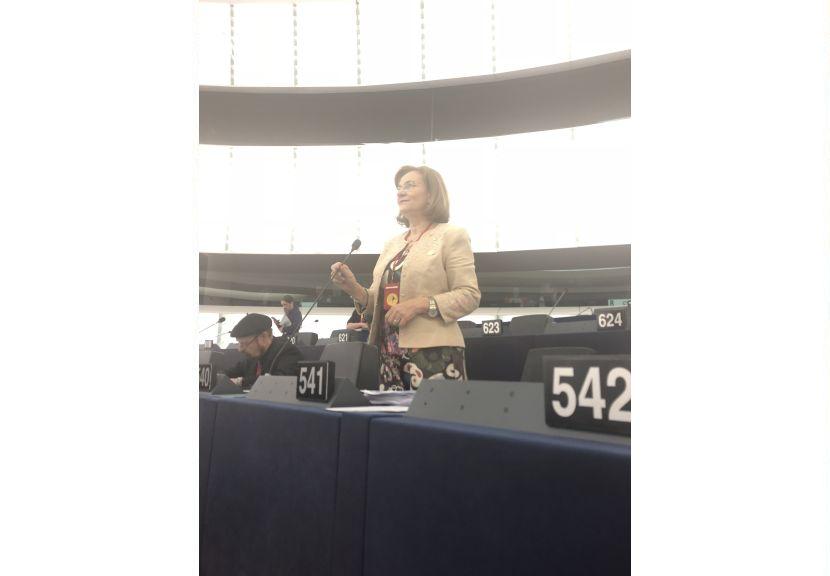 Combaterea fraudei și apărarea intereselor cetățenilor cinstiți, priorități ale Mariei Grapini! CE anunță inspecții în 16 state membre