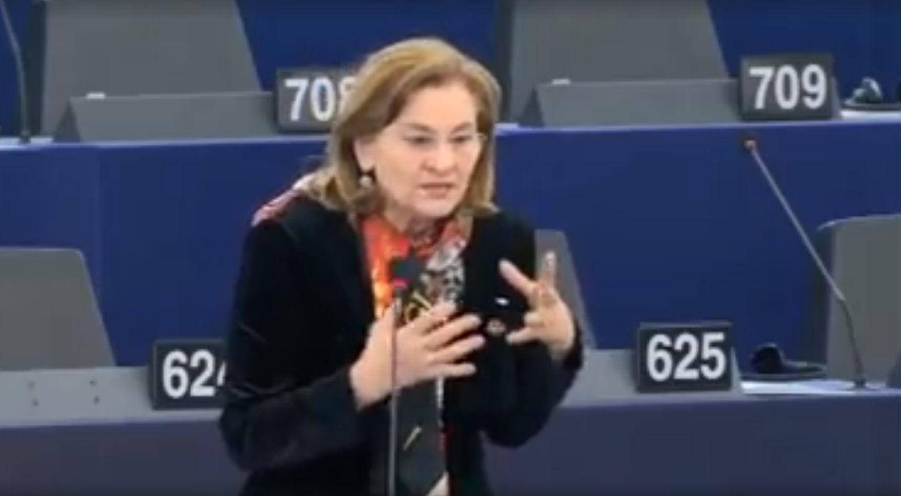Maria Grapini temperează optimismul liderilor Europei!