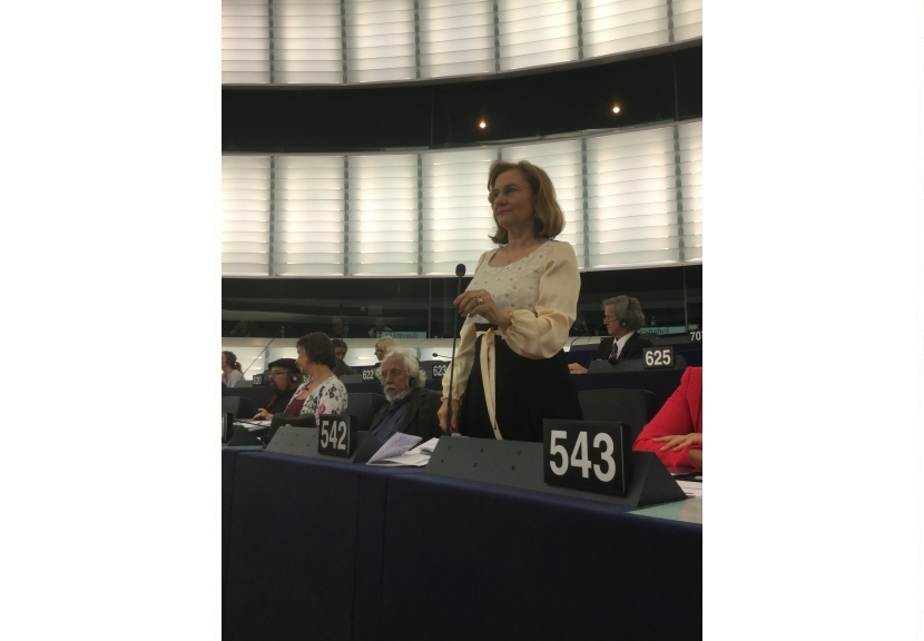 Maria Grapini o spune deschis: negocierile UE-SUA sunt obligatorii!